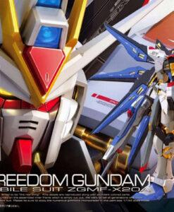Real Grade Strike Freedom Gundam