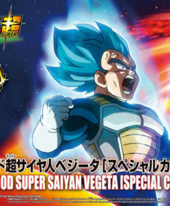 Broly Super Saiyan God Super Saiyan Vegeta Color