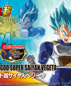 Dragon Ball Super Saiyan God Super Saiyan Vegeta Figure-rise