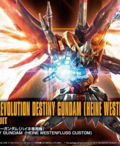 HGCE Destiny Gundam Westenfluss Custom